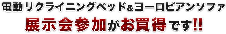 電動リクライニングベッド&ヨーロピアンソファを買うなら展示会参加がお買得です!!